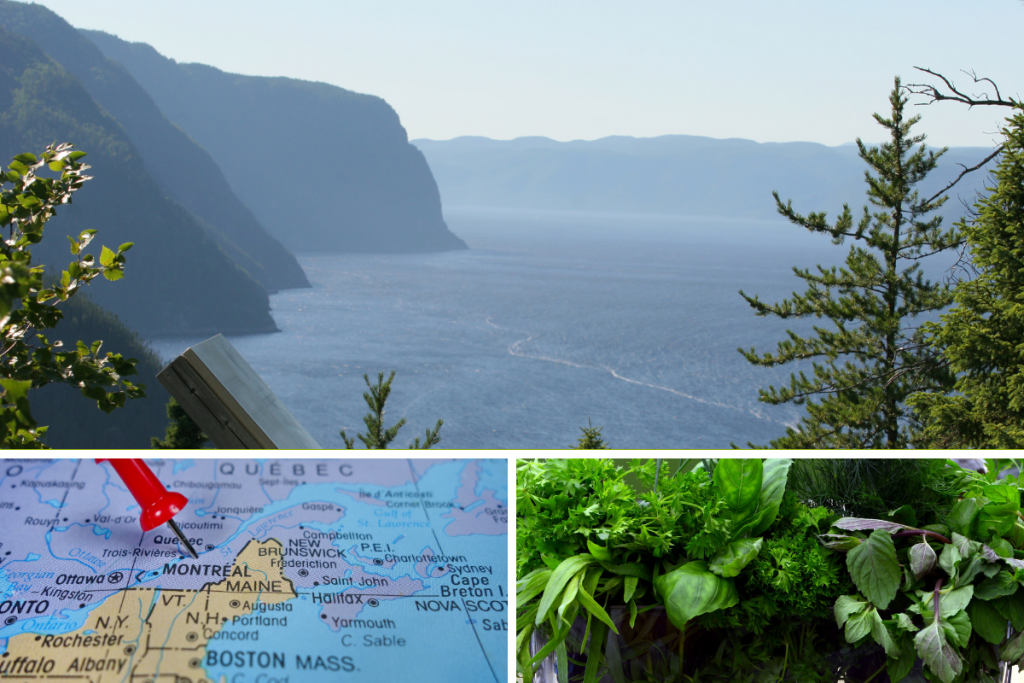 GRID OF 3 PICTURES OF FJORDS OF QUEBEC MAP OF QUEBEC AND HERBES OF QUEBEC